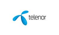 Logo des Referenzkunden telenor